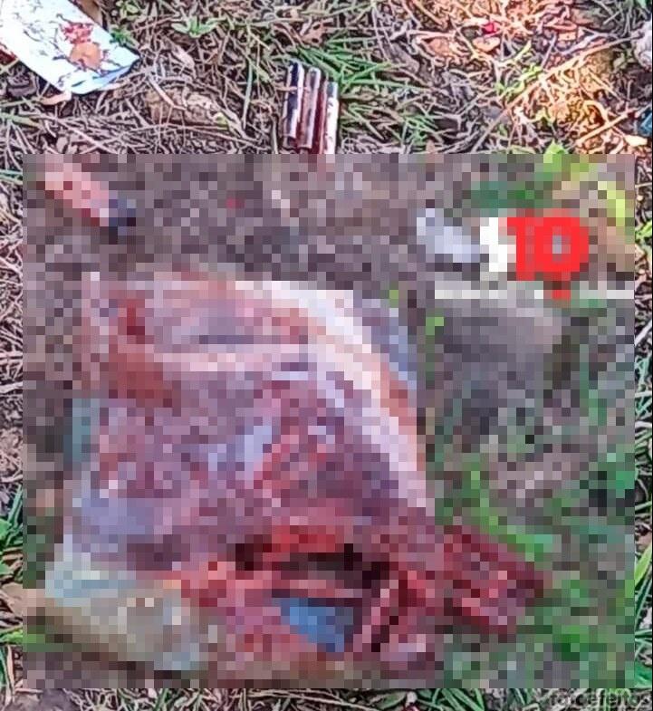 Lixo hospitalar é descartado em vias públicas em Piripiri; veja riscos