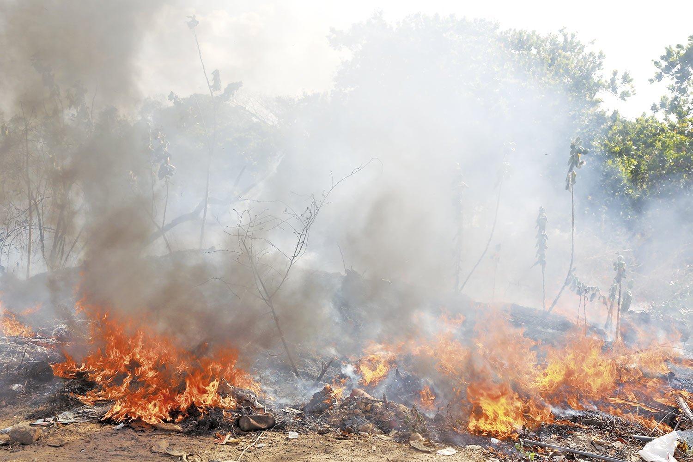 Sem manejo adequado, incêndios em áreas naturais devem se intensificar nos próximos meses, alerta estudo- Foto: Jornal MN