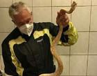 Cobra foge para casa vizinha, vai parar no vaso sanitário e pica idoso