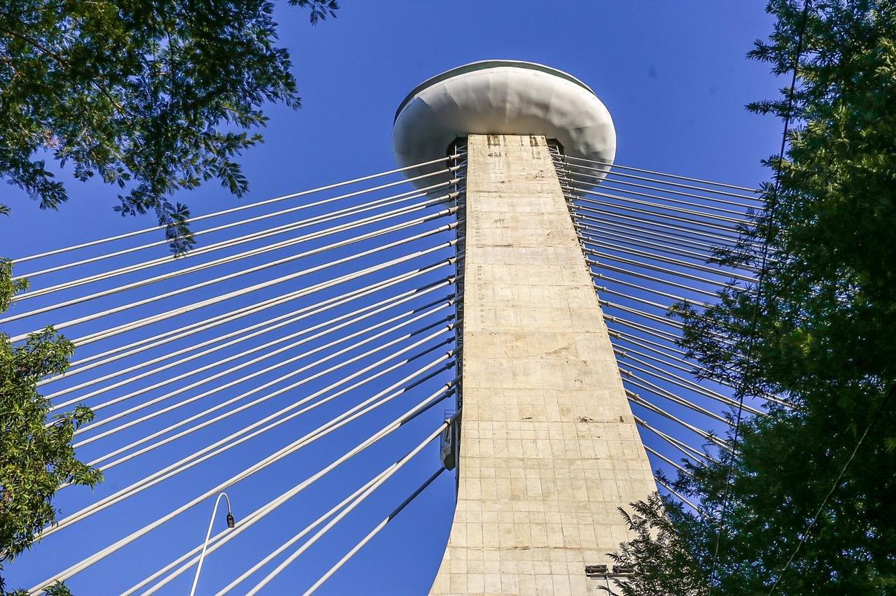Mirante da Ponte Estaiada é reaberto neste sábado- Foto: Divulgação/PMT