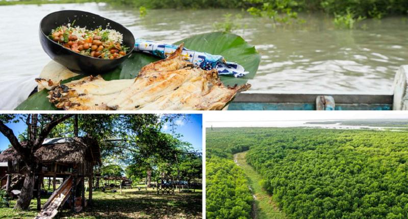Projeto desbrava encantos do roteiro Amazônia Atlântica, no Pará - Imagem 1