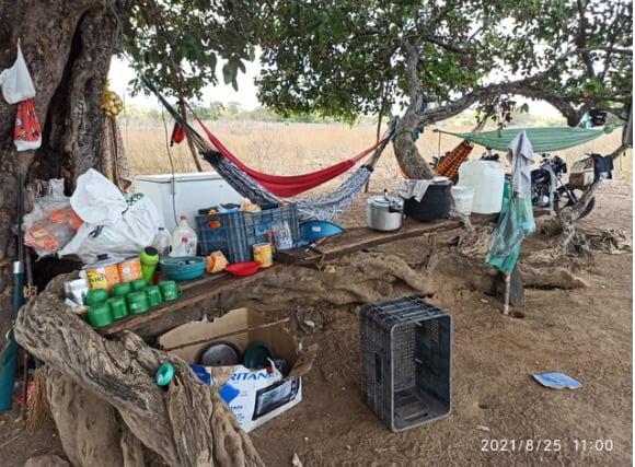 Trabalhadores foram econtrados alojados debaixo de uma árvore