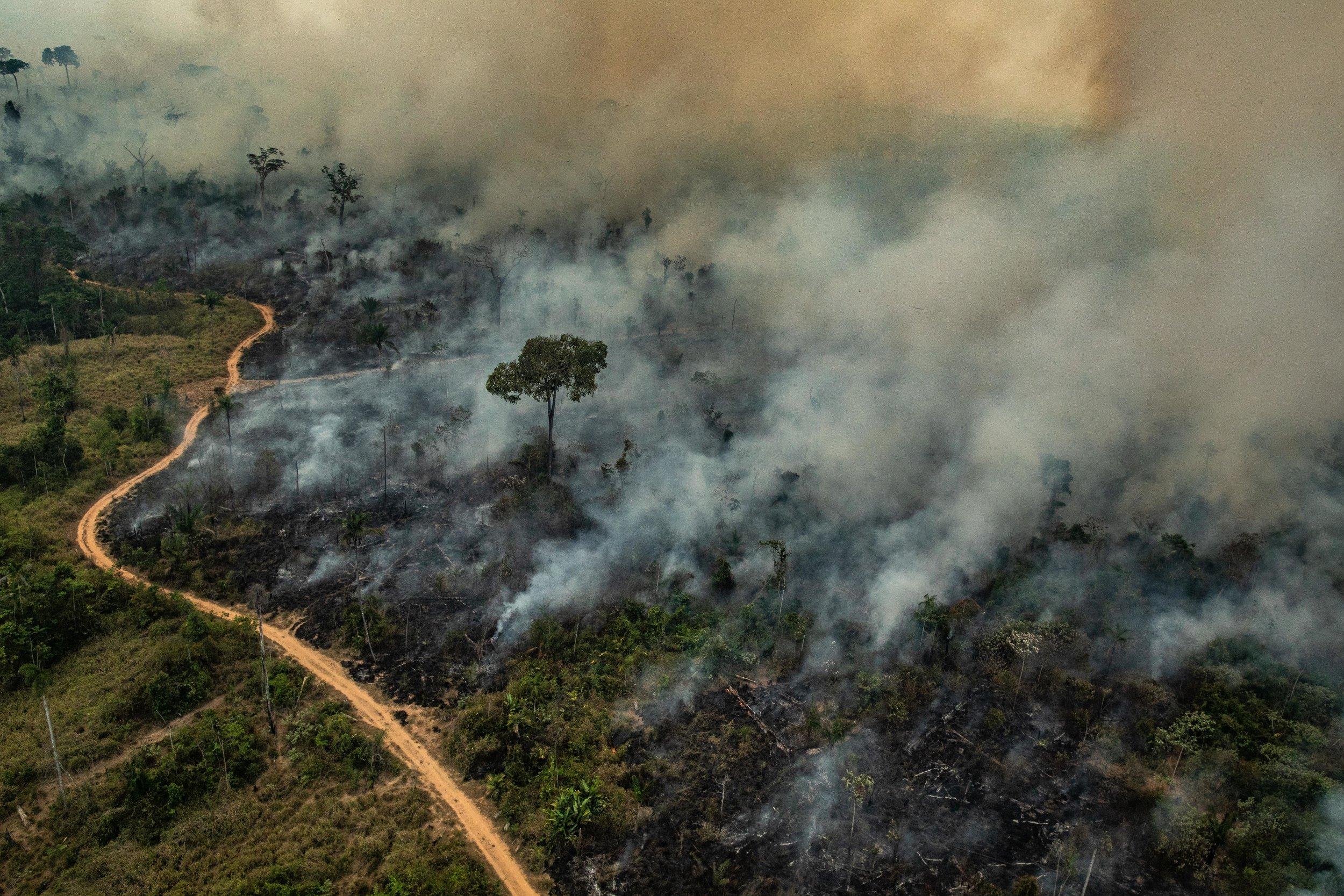 Pesquisadores usam dados de radar para medir o impacto do fogo na Amazônia- Foto: Greenpeace