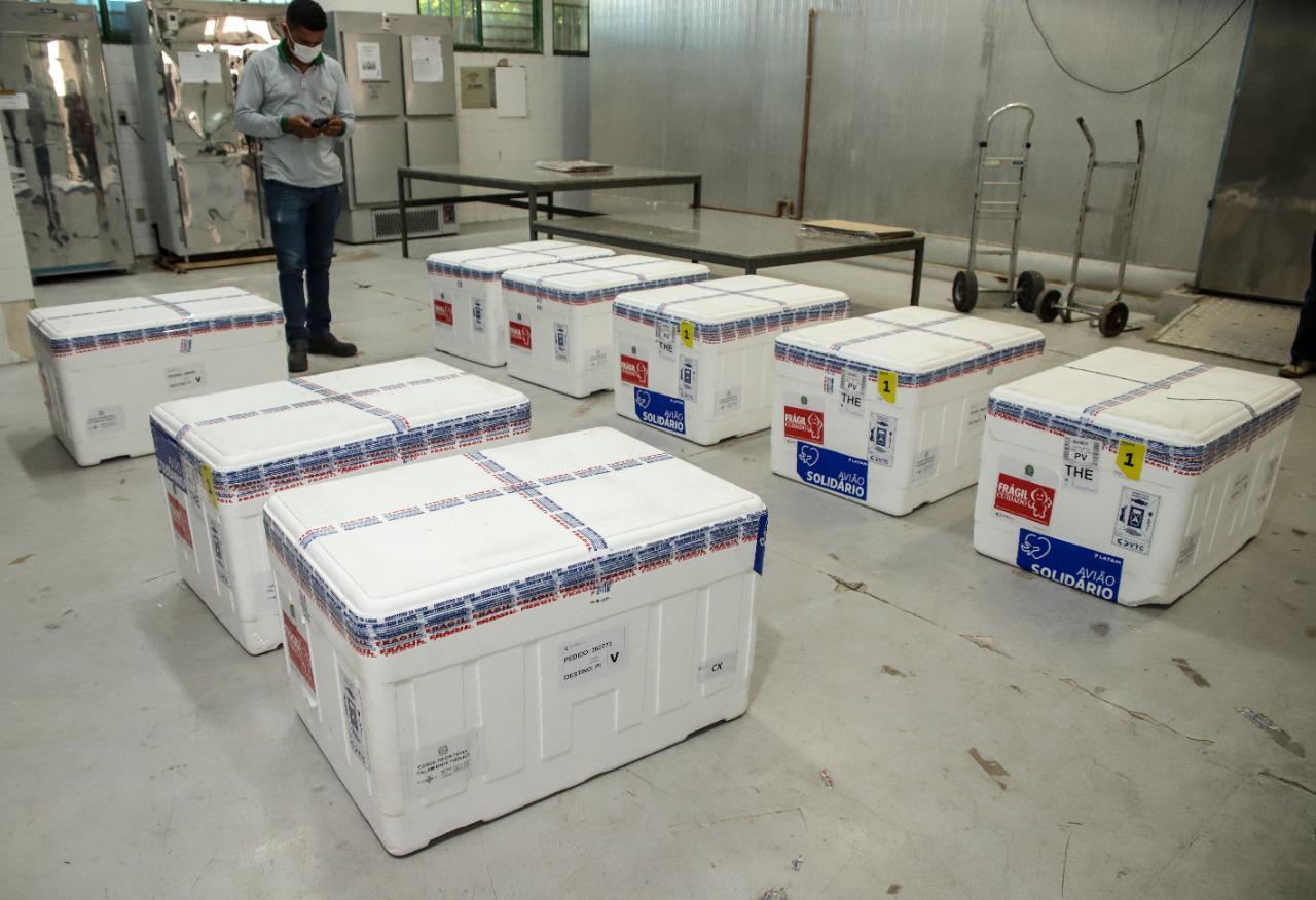 Nova remessa de vacinas chega na tarde de sábado em Teresina - Foto: Divulgação/Sesapi