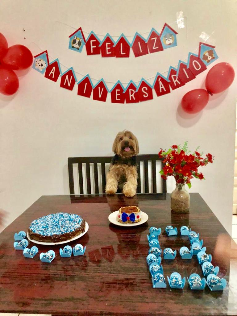 Pet ganha festa de aniversário