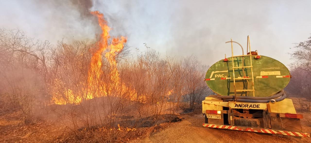 Focos de incêndio se espalham por vários locais-André Pessoa