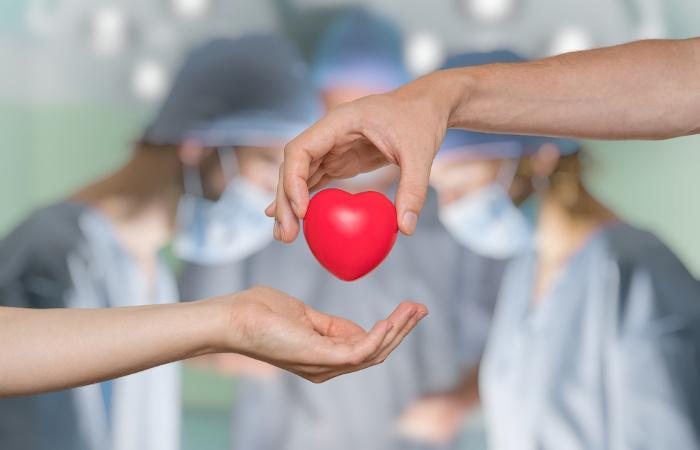 Maioria dos brasileiros têm intenção de doar órgãos, mas não avisa família (Foto: Reprodução)