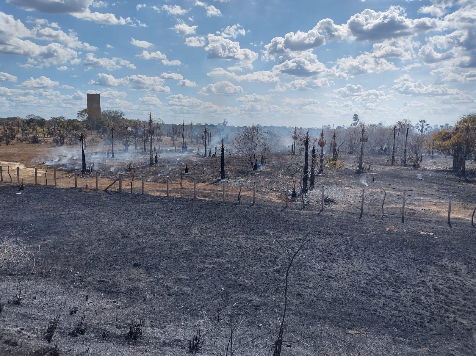 Incêndio atingiu áreas próximas ao Monumento da Batalha de Jenipapo | FOTO: Reprodução