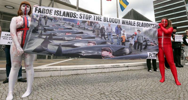 Manifestantes da PETA protestam pelo fim da caça das baleias nas Ilhas Faroé. (Foto: Yuri Ferreira )