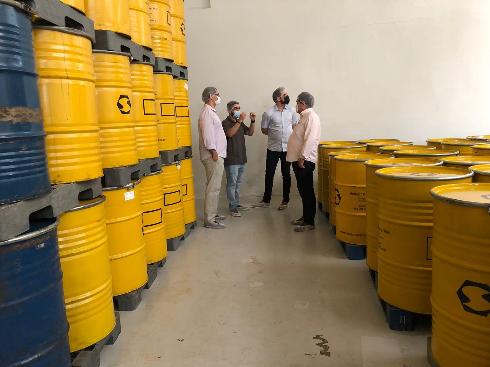 Produção de mel no Piauí