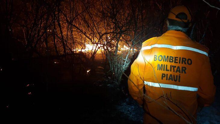 Bombeiros do Piauí combatem incêndio na divisa com Ceará há mais de 10 dias (Foto: Divulgação)