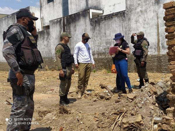 Corpo de bebê recém nascido é encontrado em terreno baldio em Floriano (Foto: Temístocles Filho/ Portal JC 24 Horas)