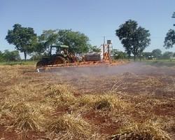 Correção de solo aumenta produtividade em 30%; veja dicas