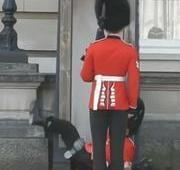 Guarda real protagoniza 'vídeocacetada' no Palácio