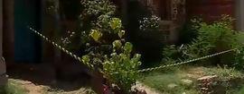 Corpo é encontrado dentro de casa na zona Norte de Teresina