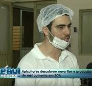 Piauí Moderno: Novas técnicas ampliam produção de mel em Picos
