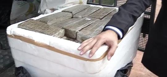 150 quilos de drogas são incinerados em sítio na zona rural de Teresina