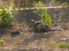 Corpo de homem é encontrado por populares na zona Leste de Teresina