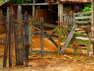 Homem mata o próprio primo por causa de porteira em Jacobina do Piauí