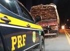 PI é o terceiro Estado que mais apreendeu madeira ilegal em 2019