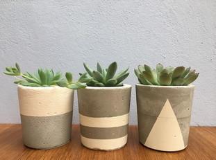 Aprenda a fazer vaso de concreto para decoração