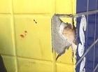 Bandido rouba mulher e efetua disparos no Centro de Teresina