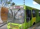 Sindicato dos Trabalhadores de transporte urbano denuncia demissões