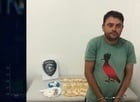 MA:Homem é preso vendendo drogas dentro de mascote de time de futebol