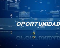 OPORTUNIDADES DE EMPREGO / COM SUZY SOUSA