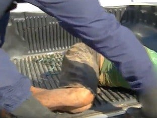 Assaltante é preso ao assaltar idosa no Centro de Teresina