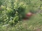 PI-113: Mulher morre após ser atropelada por caminhonete
