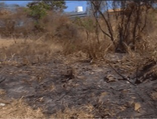 Crescem registros de incêndios e Bombeiros alertam para risco