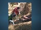 Homem é encontrado morto no Rio Parnaíba com marcas de tiros